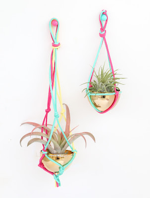 http://www.akailochiclife.com/2016/02/craft-it-macrame-air-plant-hanger.html