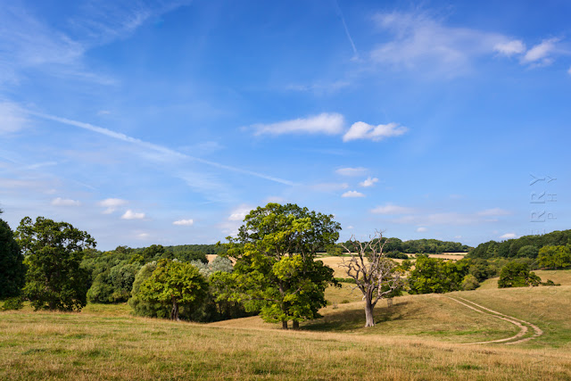 Oxfordshire Cotswold landscape around the village of Swinbrook by Martyn Ferry Photography