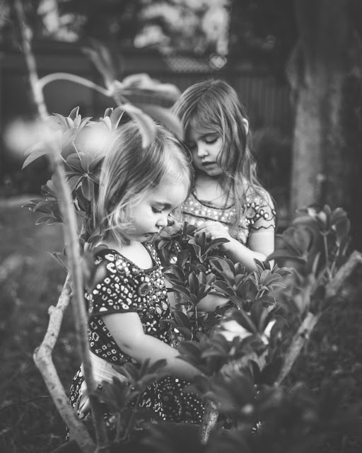 children playing in the garden, Hawkesbury family photography