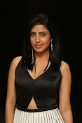 pragya latest sizzling photos-thumbnail-18