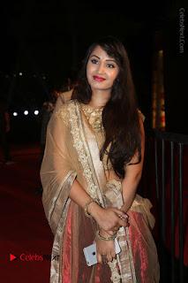 Actress Vennela Stills in Lehenga Choli at Gemini TV Puraskaralu 2016 Event  0003.JPG