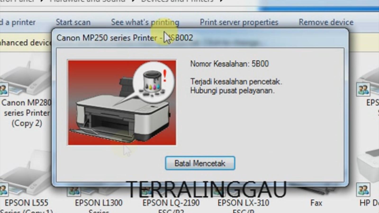 mp258 error code 5b00
