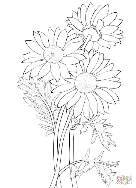 Click The Daisy Coloring Pages To View Printable Version Or Color It Online  Patible With Ipad And Android Tablets