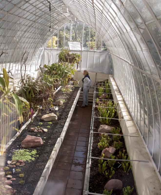 Viveros vangarden el destino de nuestras plantas carnivoras for Estructura vivero