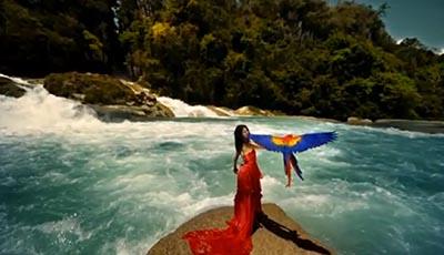 Nanavil Tholaithen Official Video Song