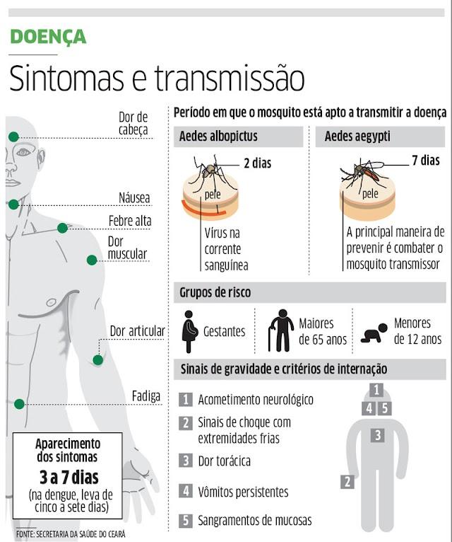 Casos de febre chikungunya aumentam 1.200%