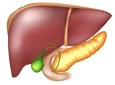 home remedies for liver