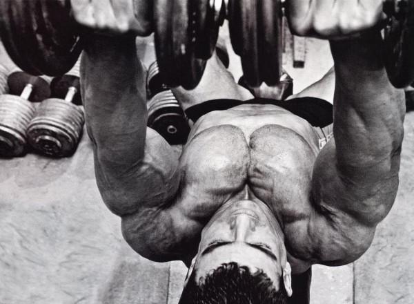 bodybuilding-univers-muscle: bodybuilding:conseils pour
