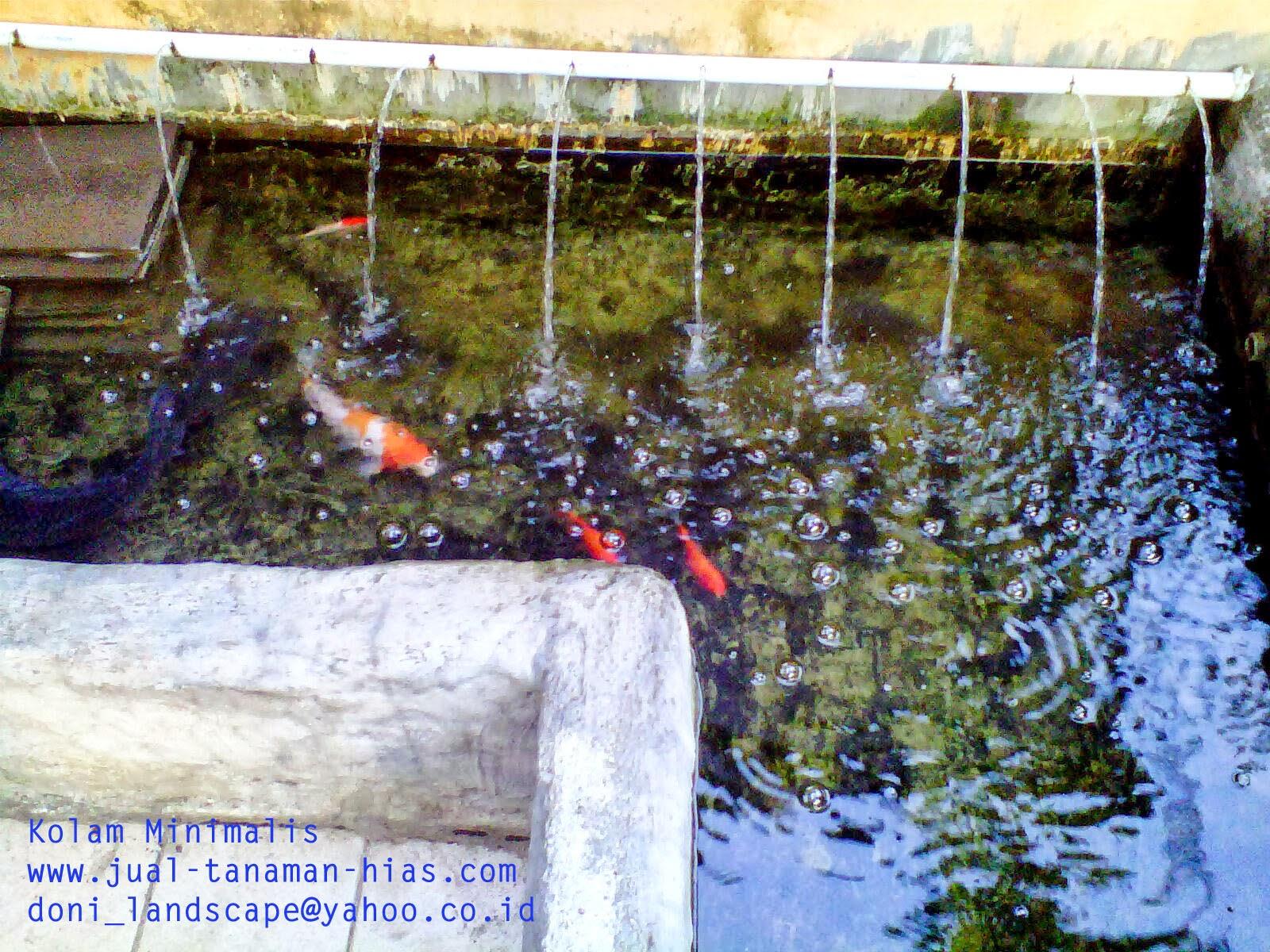 Tukang taman Bogor kota | tukang kolam Minimalis Jabodetabek | kolam air mancur | kolam hias bogor
