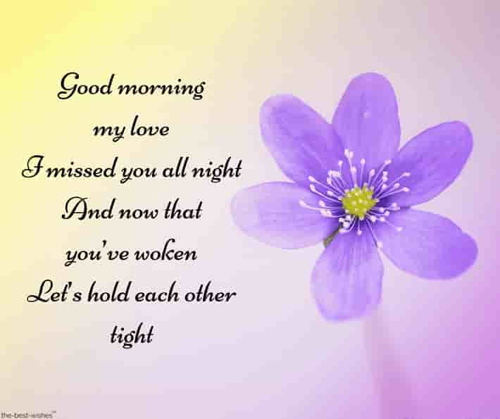 good morning poem for my love with purple flower