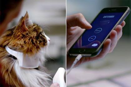 Catterbox, Alat Penerjemah Suara Kucing