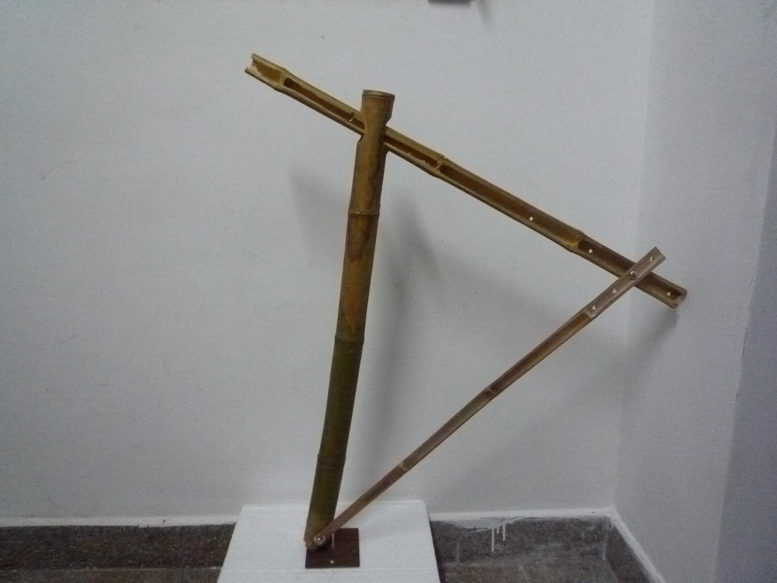 Bambu Aureo Módulo I