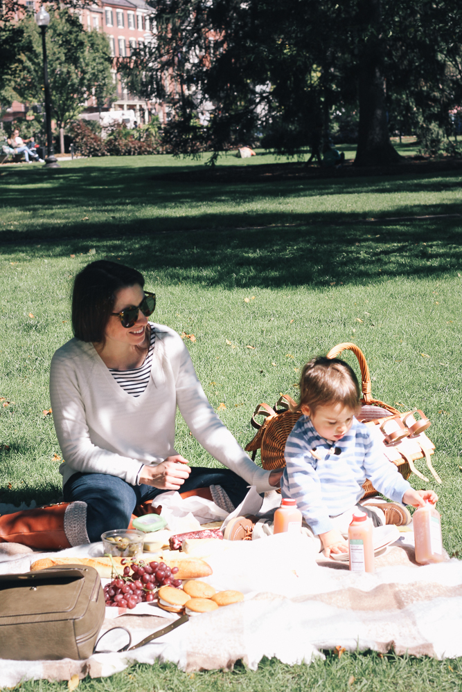 Boston Life and Style Blogger, The Northern Magnolia, shares the menu and outfit details for her fall picnic in Boston Public Garden