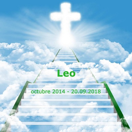 Leo nos ha dejado hoy... (Лео нас сегодня оставил...)