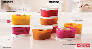 Tupperware keep tab xtra mini