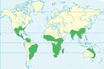 Mapa de distribución del clima tropical en el mundo