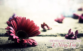 i don't know what else there is to say - i miss you with red flower pic