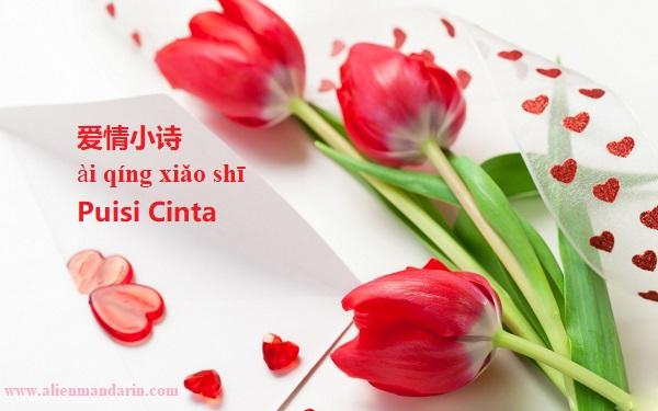 5 Kumpulan Puisi Cinta Pendek Dalam Bahasa Mandarin