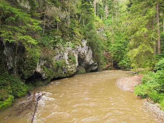 Skały podcięte rzeką.