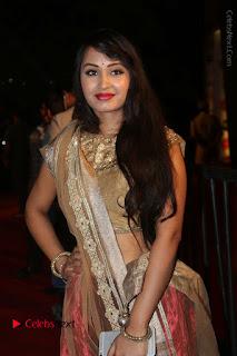 Actress Vennela Stills in Lehenga Choli at Gemini TV Puraskaralu 2016 Event  0018.JPG