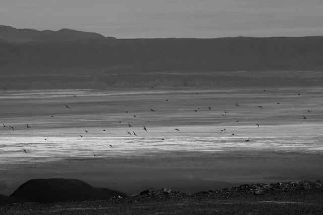Como vivem os nativos nos ayllus do Deserto do Atacama.