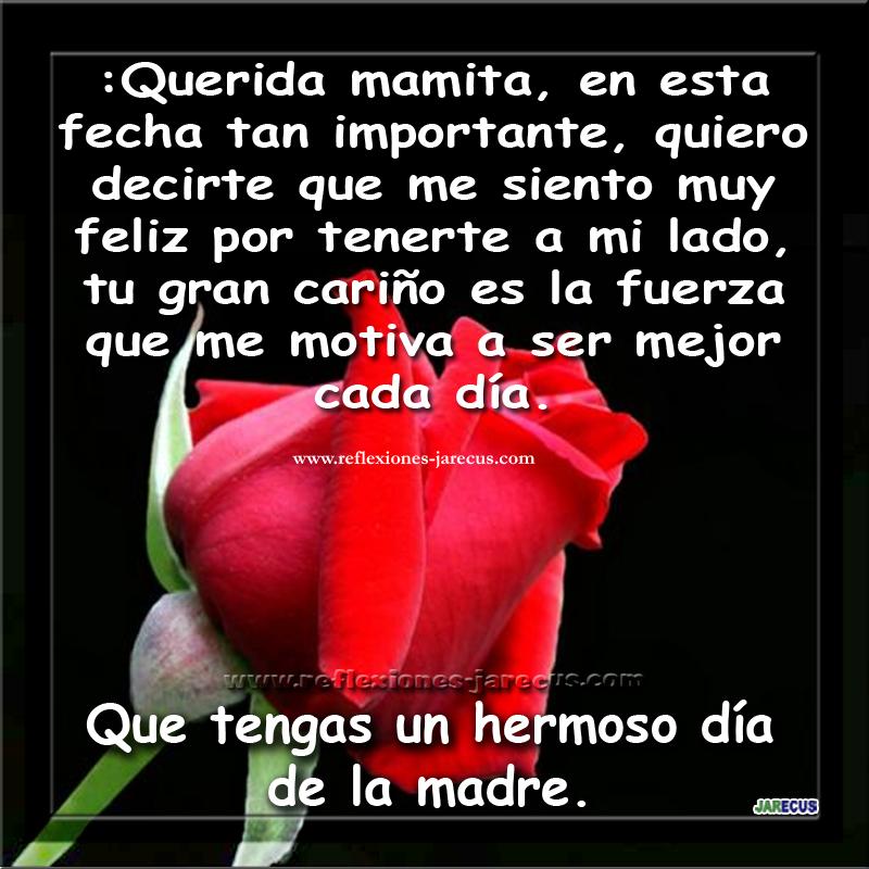 Feliz día de la madre, querida mamita, en esta fecha tan importante, quiero decirte que me siento muy feliz por tenerte a mi lado, tu gran cariño es la fuerza que me motiva a ser mejor cada día. Que tengas un hermoso día de la madre.
