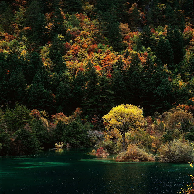 Images For: 2013 Beautiful Landscapes Photography