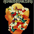 The Ultimate Path To Reality; A Review of Homecoming by Ola W. Halim