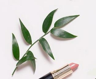Lipstick with Natural Ingredients