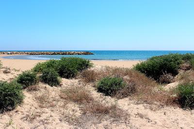 Playa Estany-Cullera (Valencia)
