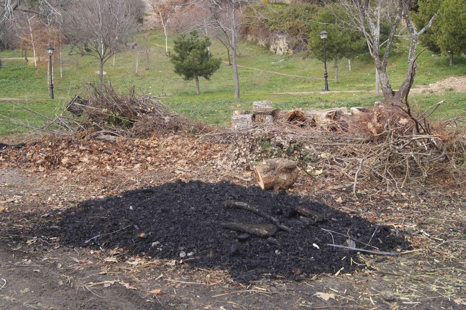 Entorno escorial mandamos un escrito sobre las quemas en el parque de la ladera - Concepcionistas escorial ...