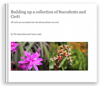 The Book on Succulents
