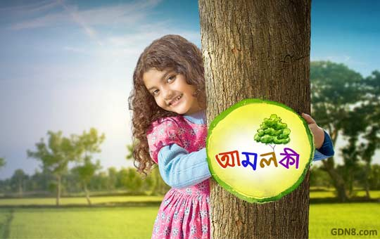 Amloki Zee Bangla Serial