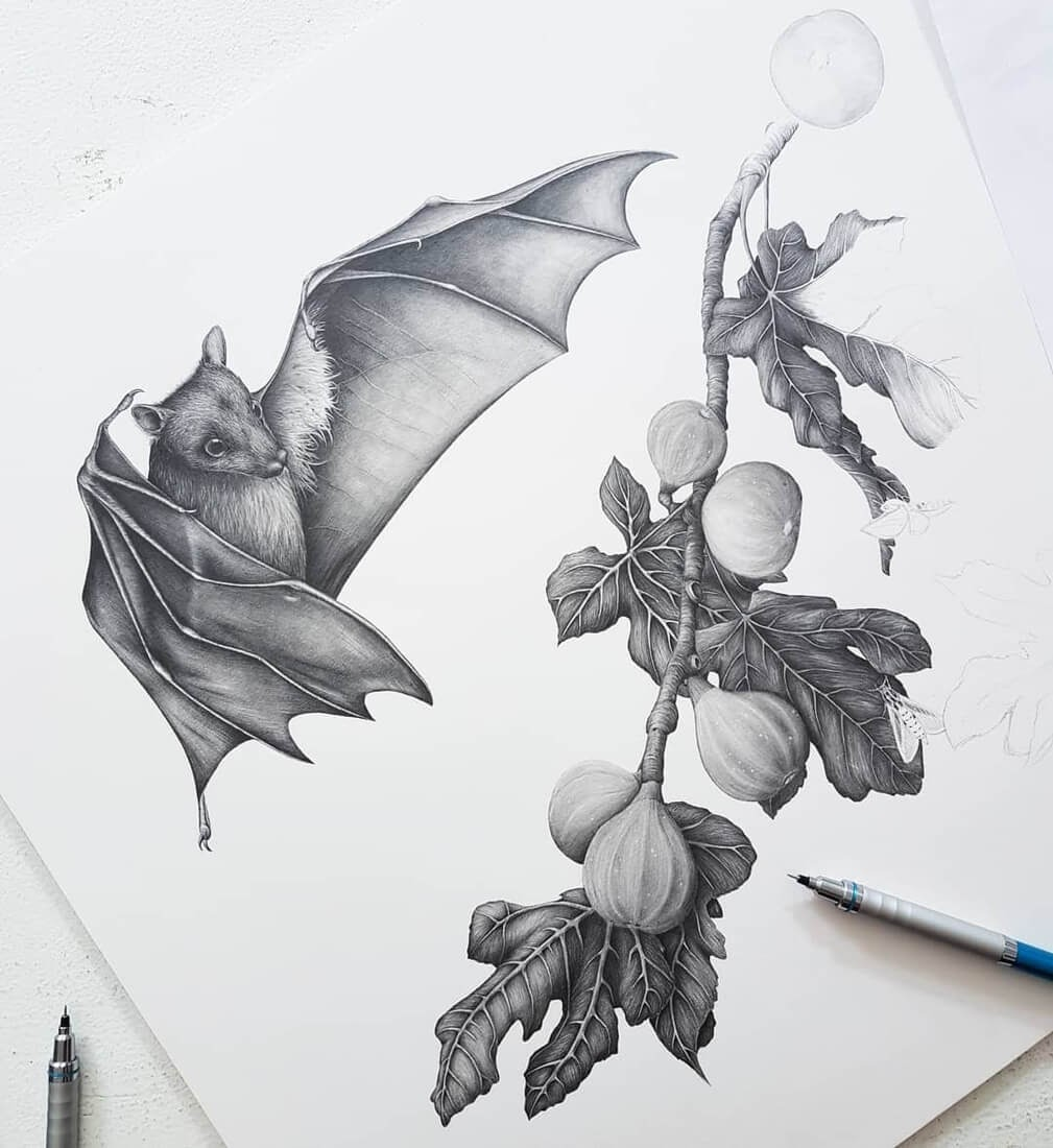04-Fruit-Bat-Kerry-Jane-Detailed-Black-and-White-Wildlife-Drawings-www-designstack-co