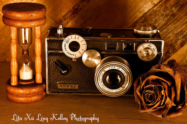 "Argus C3 Rangefinder, ""The Brick"" Fine Art Photo by Lita Kelley"