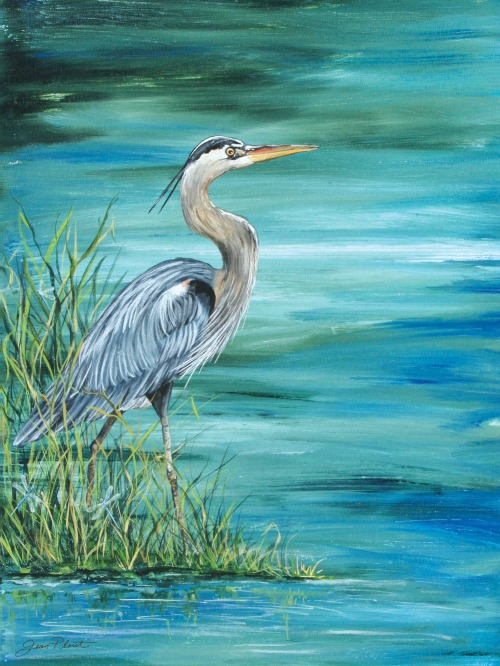 Large Blue Heron Art Canvas