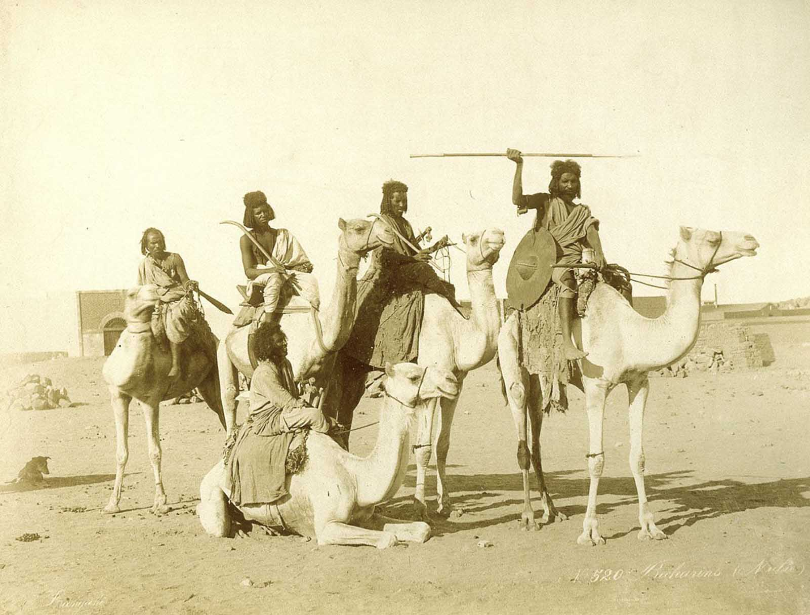 Bicharin men on camels.