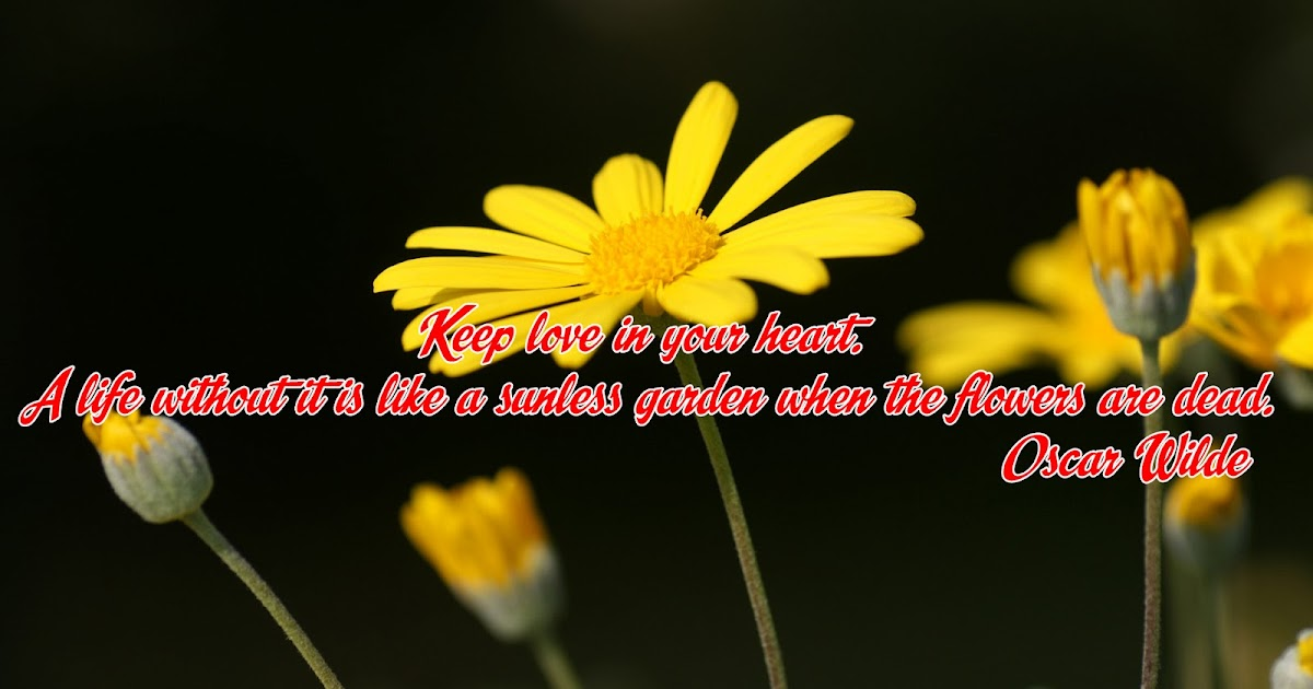 LatestPhotoshopimages: Keep Love In Your Heart A Life