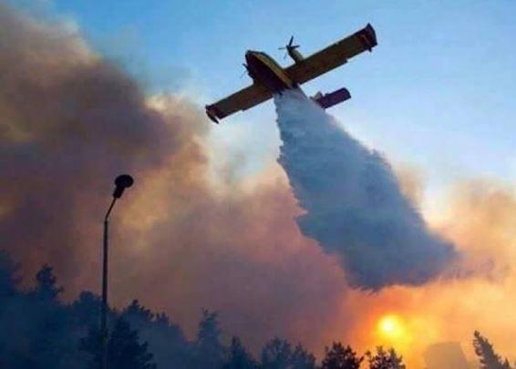 Palestin Bantu Padam Kebakaran, Israel Ucap Terima Kasih