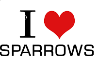 Theme of World sparrow day 2021
