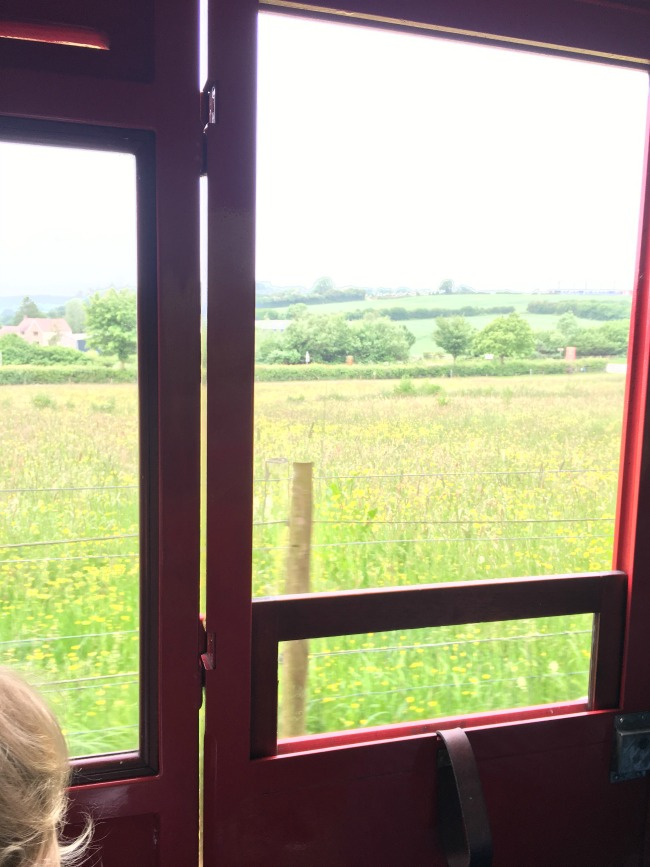 toddler-looking-at-countryside-from-carriage-at-Perrygrove-Railway