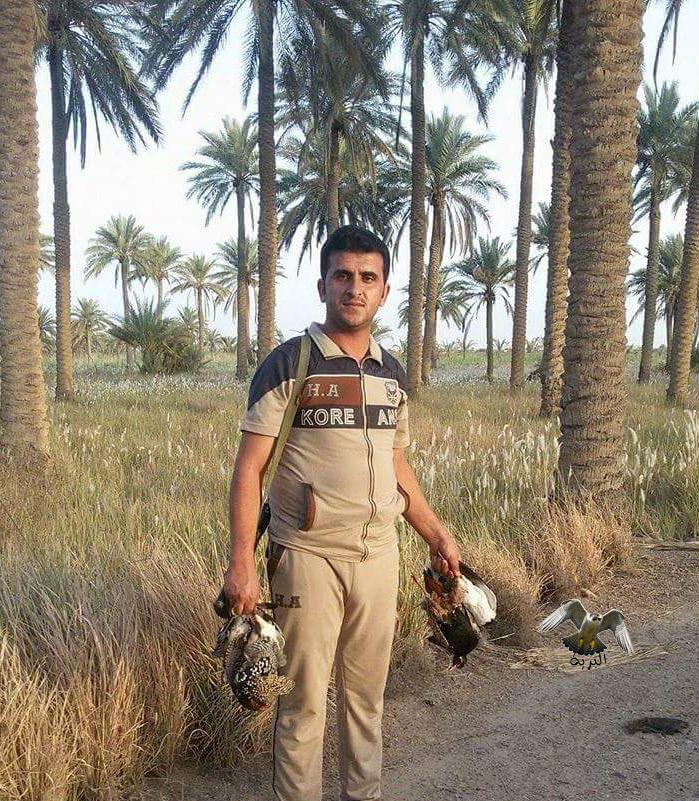 صيد الدراج في العراق