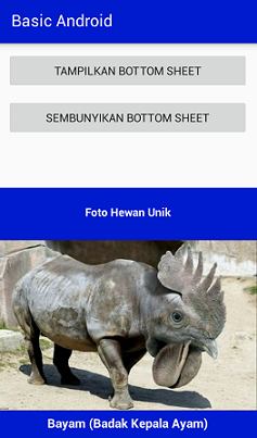 Screenshot_Bottom Sheet Example2