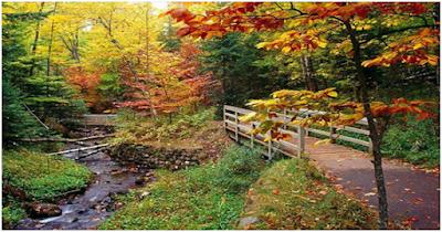 Μήνας Οκτώβριος, ο μήνας των χρωμάτων η καρδιά του φθινόπωρου