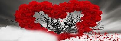 nvMMqQMSrXQGQJLj - Happy Valentine's Day FaceBook Images DP
