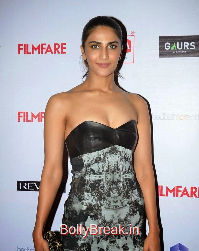Vaani Kapoor, 60th Britannia Filmfare Awards pre-awards Party 2015 Red Carpet Pics