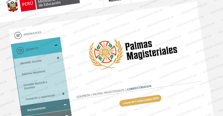 MINEDU: Ganadores Palmas Magisteriales 2019 - www.minedu.gob.pe