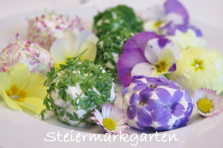 Topfenbällchen-mit-Blüten-Steiermarkgarten