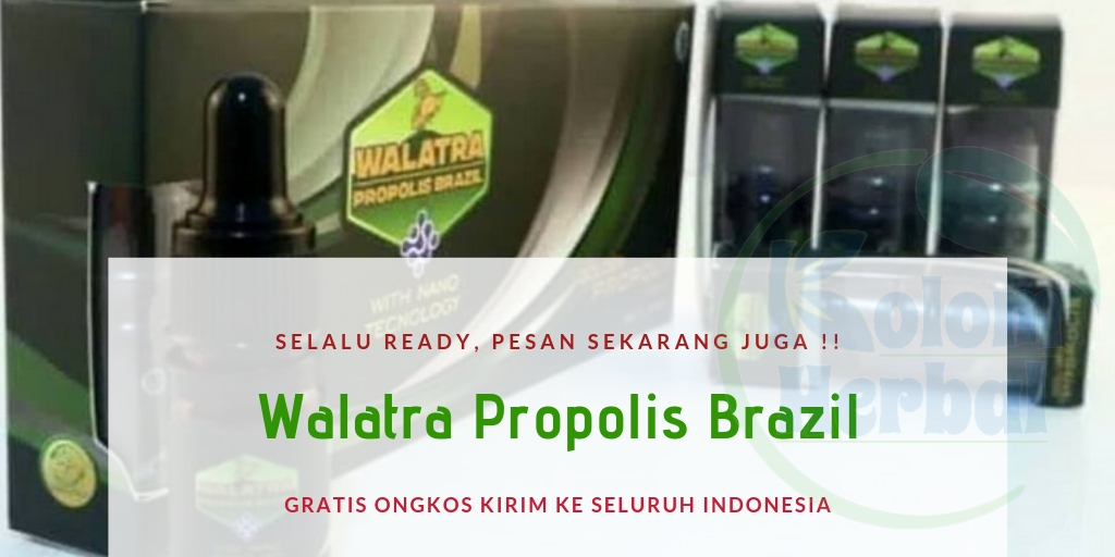 Walatra Propolis Brazil Asli