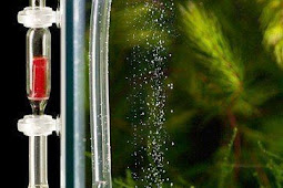 Cara Menyebarkan CO2 Dengan Diffuser pada Aquascape